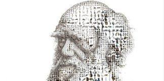 Дарвин - вид и разновидности