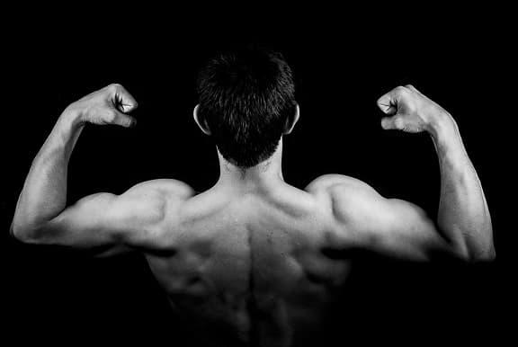 Алкохол и мускули