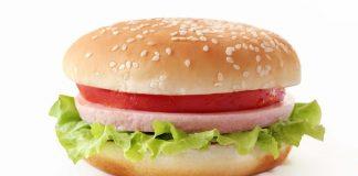 Факти за хамбургера