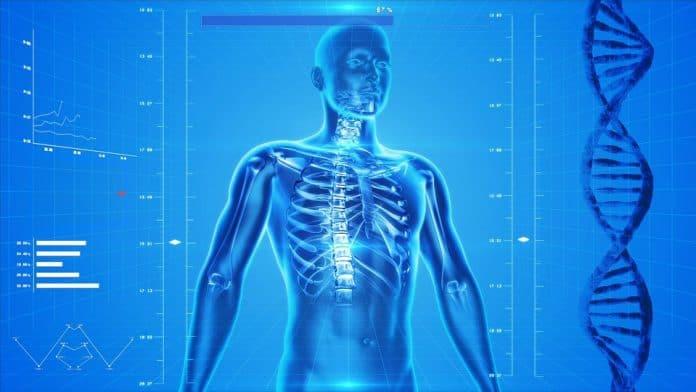 Как да се храним за здрави кости?
