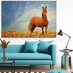Картина с кафяв кон в планината